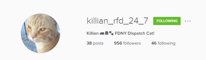 Insta_KillianHeader