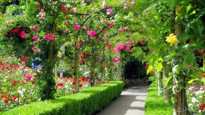 Have a lush garden retreat.